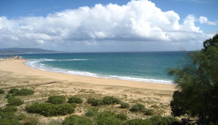 Urlaubszeit ist Meeres(schutz)Zeit