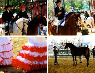 Events & Ferias Jerez